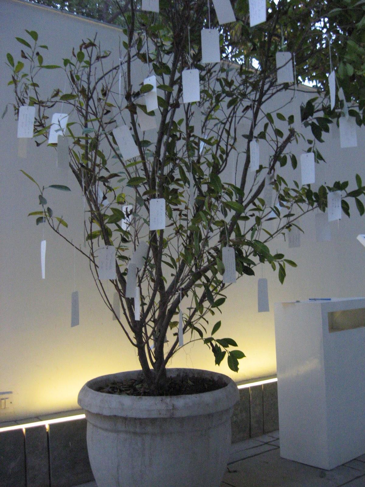 India Japan Passage To The Next Generation Yoko Onos Wish Tree