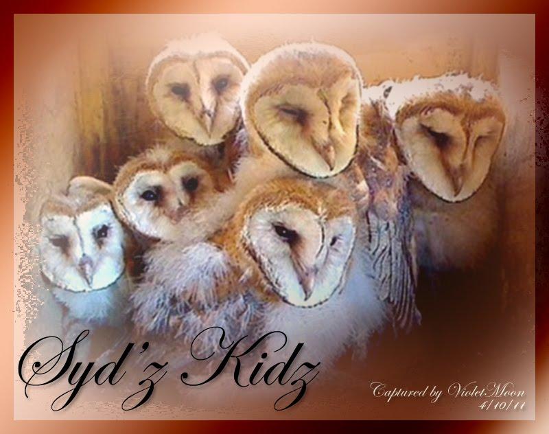 Syd'z Kidz