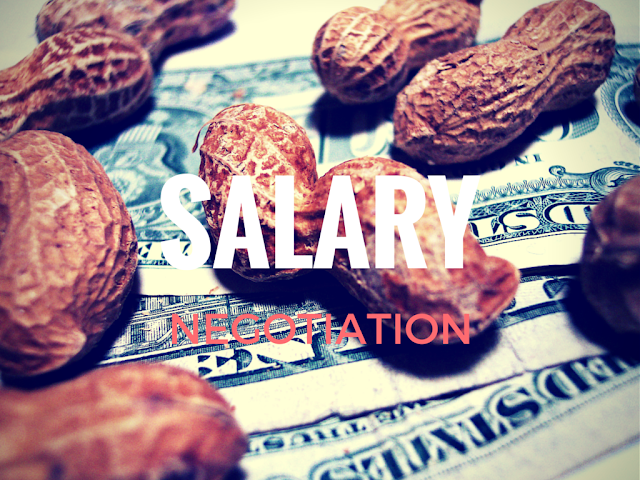 how to negotiate salary raise as a software developer