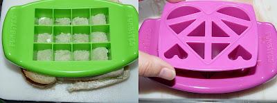 funbites zoe's lunchbox