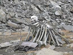 Human skeleton fond at Roopkund LAke