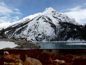 林芝,鲁朗,然乌湖~西藏 (Tibet,China)