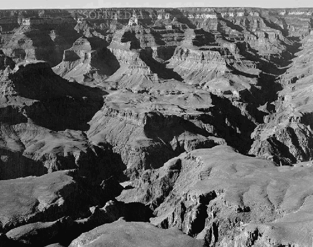 analysisi of ansel adams Free ansel adams papers, essays, and research papers.