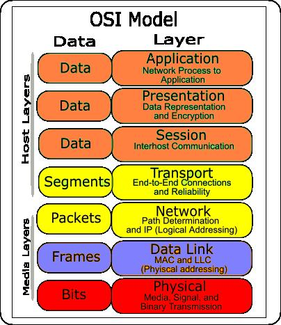data representation in the osi model