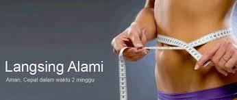 LANGSING ALAMI