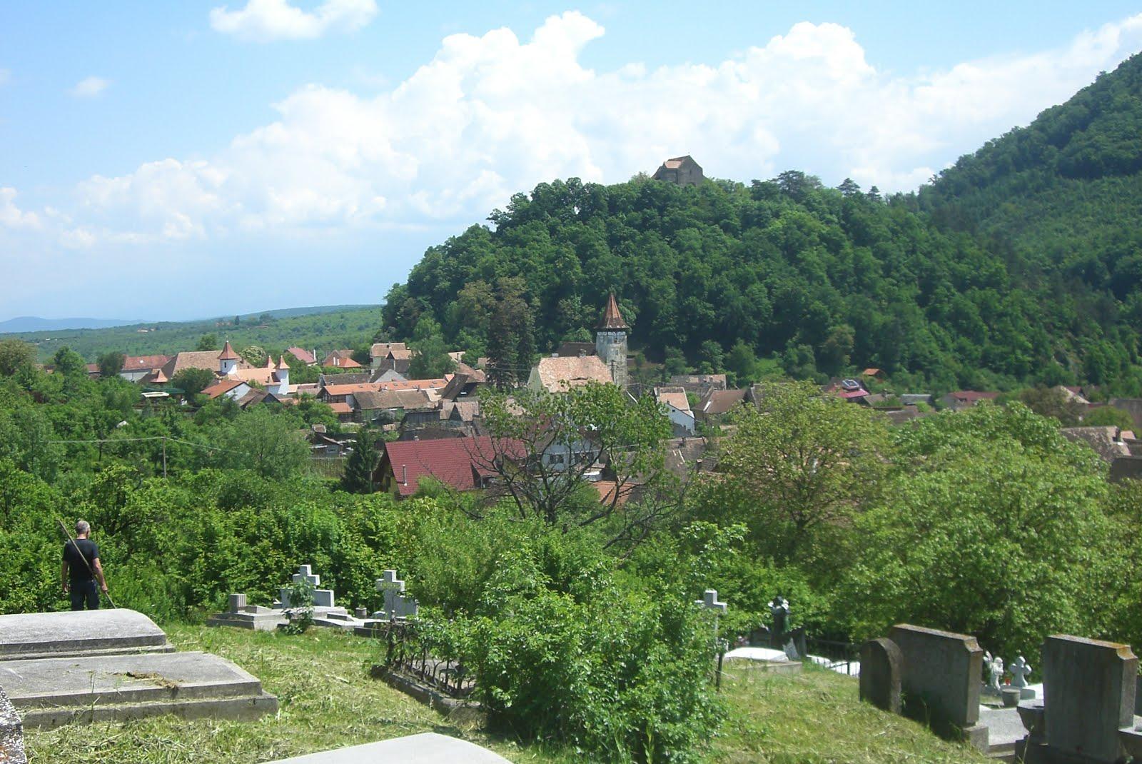 Blick auf Michelsberg und die Burg