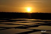 Crépuscule des Marais Salants