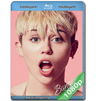 MILEY CYRUS BANGERZ TOUR (2014) FULL 1080P HD MKV