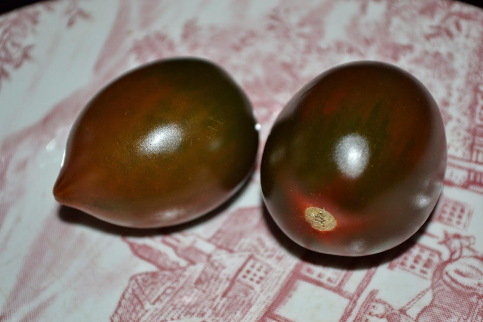 tomaten auf dem balkon tomaten einfach selber z chten auf. Black Bedroom Furniture Sets. Home Design Ideas