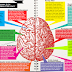 Kebiasaan Jelek Yang Bisa Bikin Otak Lemot