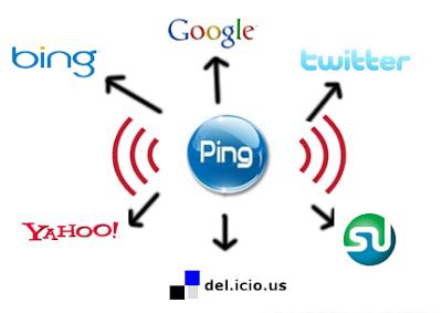 gambaran fungsi ping