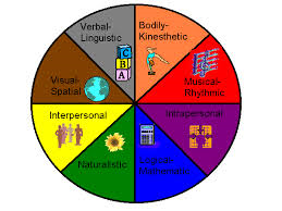 A pie chart of different intelligences