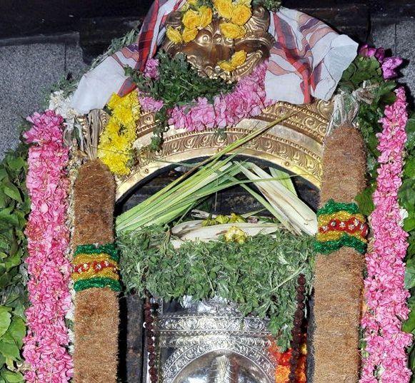 ARUNACHALA GRACE: 2012 Mahashivaratri - 116.5KB