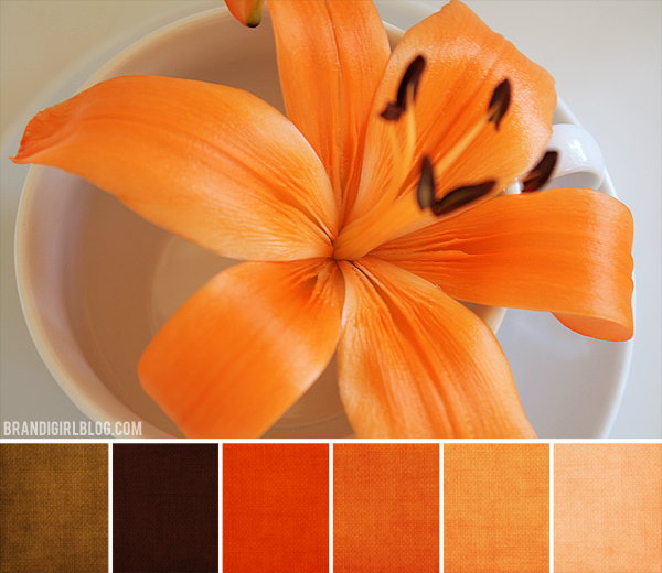 Beads of clay blog color inspirations october - Burnt orange color scheme ...