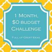 1 Month, $0 Budget Projects