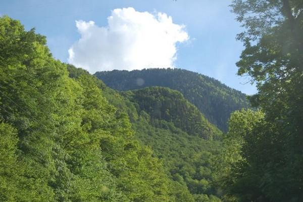Andora góry