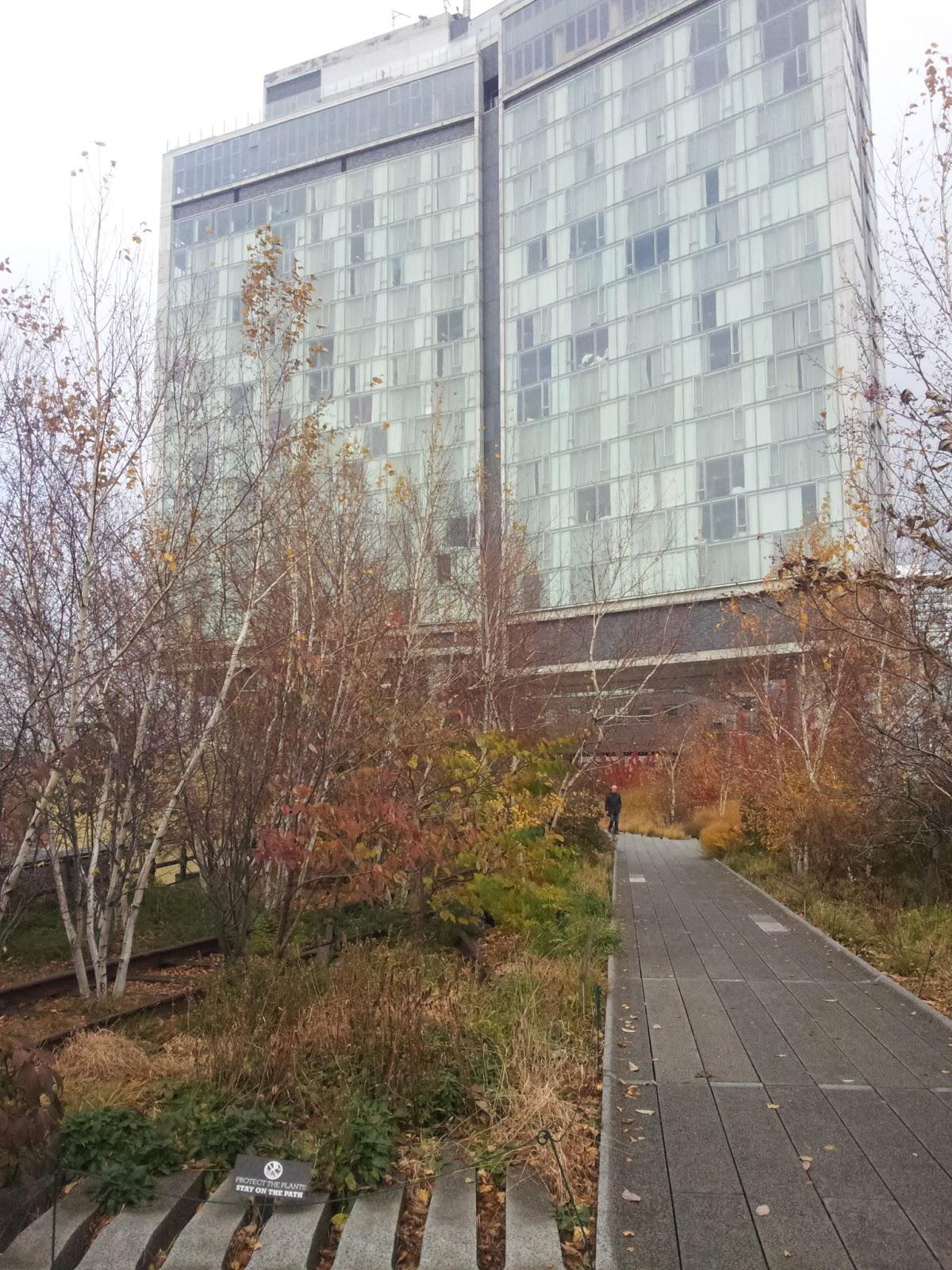 La High Line: une promenade aérienne en plein coeur de New York