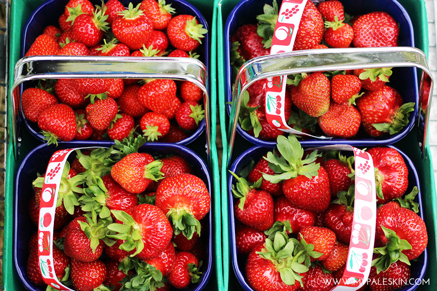 Farm, Pick your own, Strawberries, My Pale Skin Blog, Parkside Farm, London