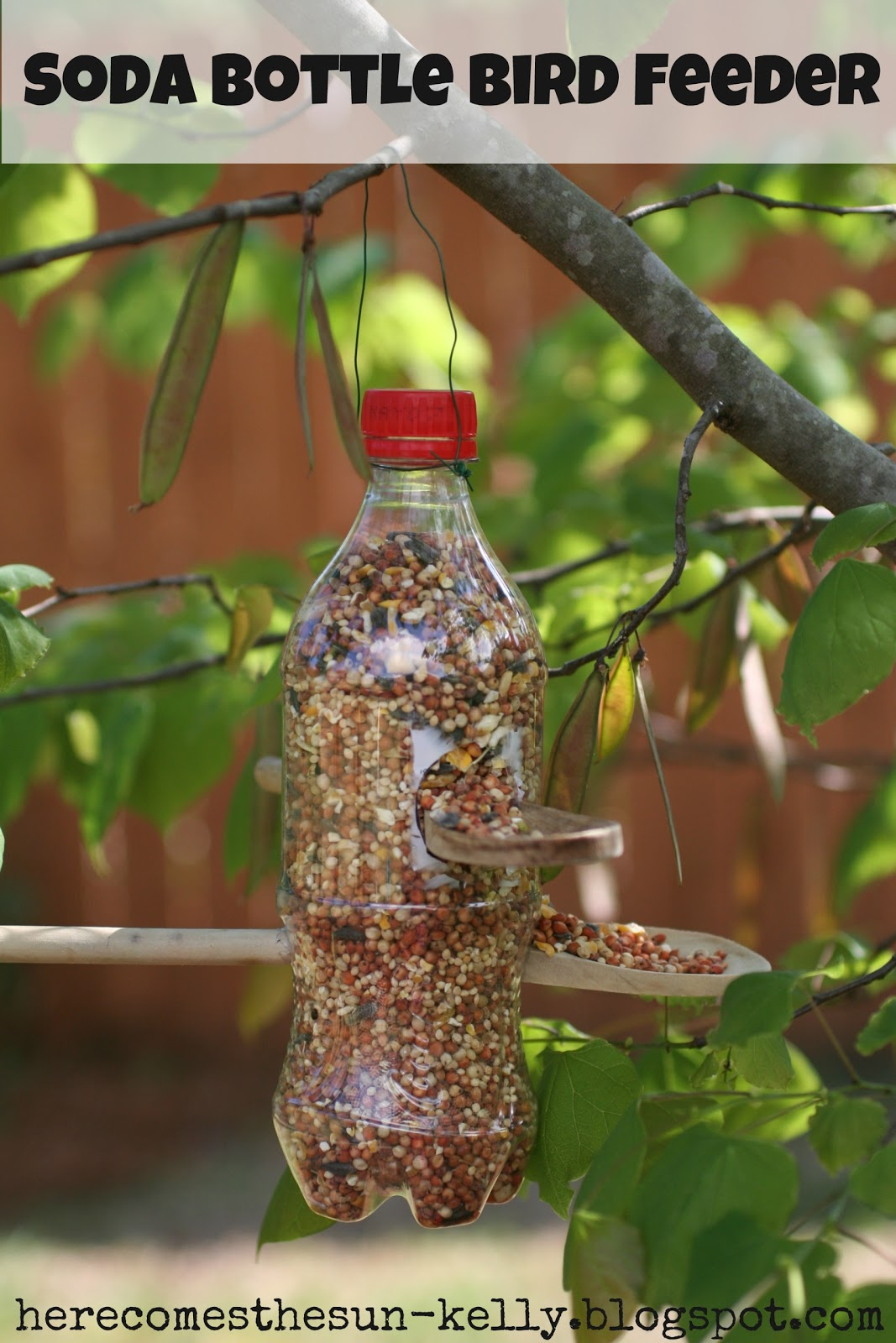 How to make a feeder from a bottle
