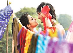 Shuddh Desi Romance Stills Screenshots