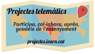 Projectes telemàtics