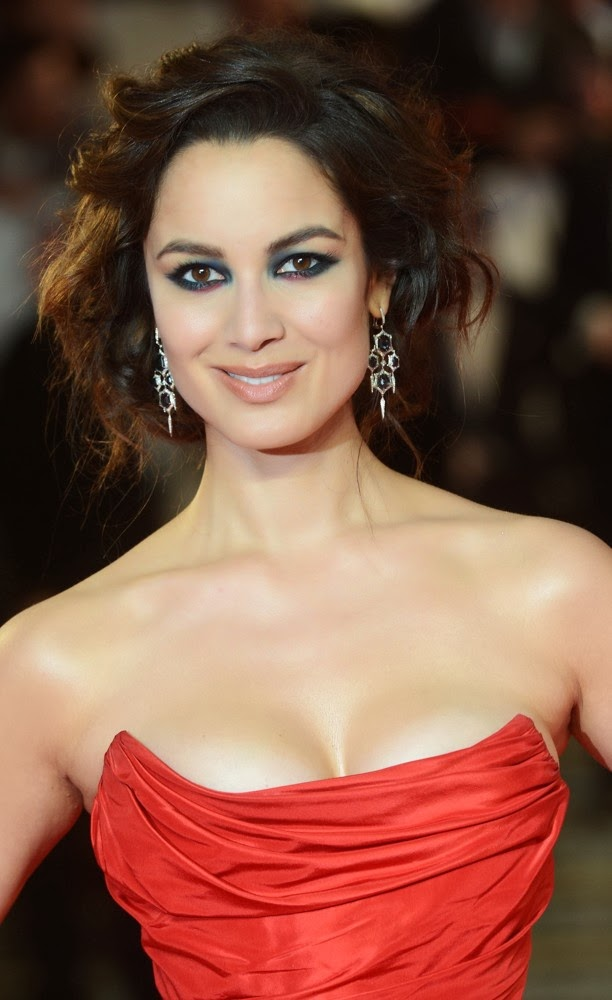 The Hottest World Models: Berenice Marlohe Photos Gallery