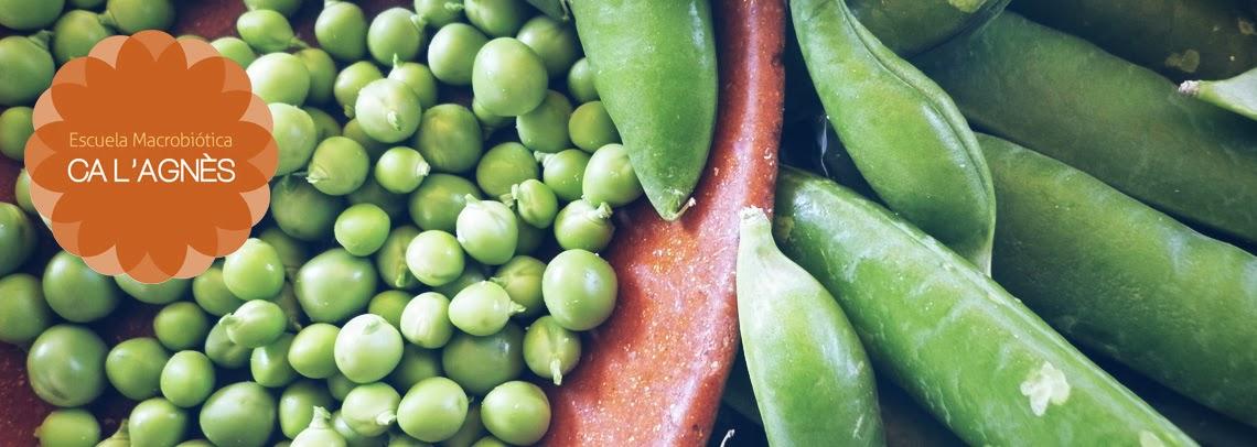 Cocina macrobi tica for Cocina macrobiotica