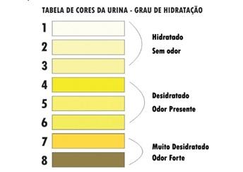 Como ler exame de urina