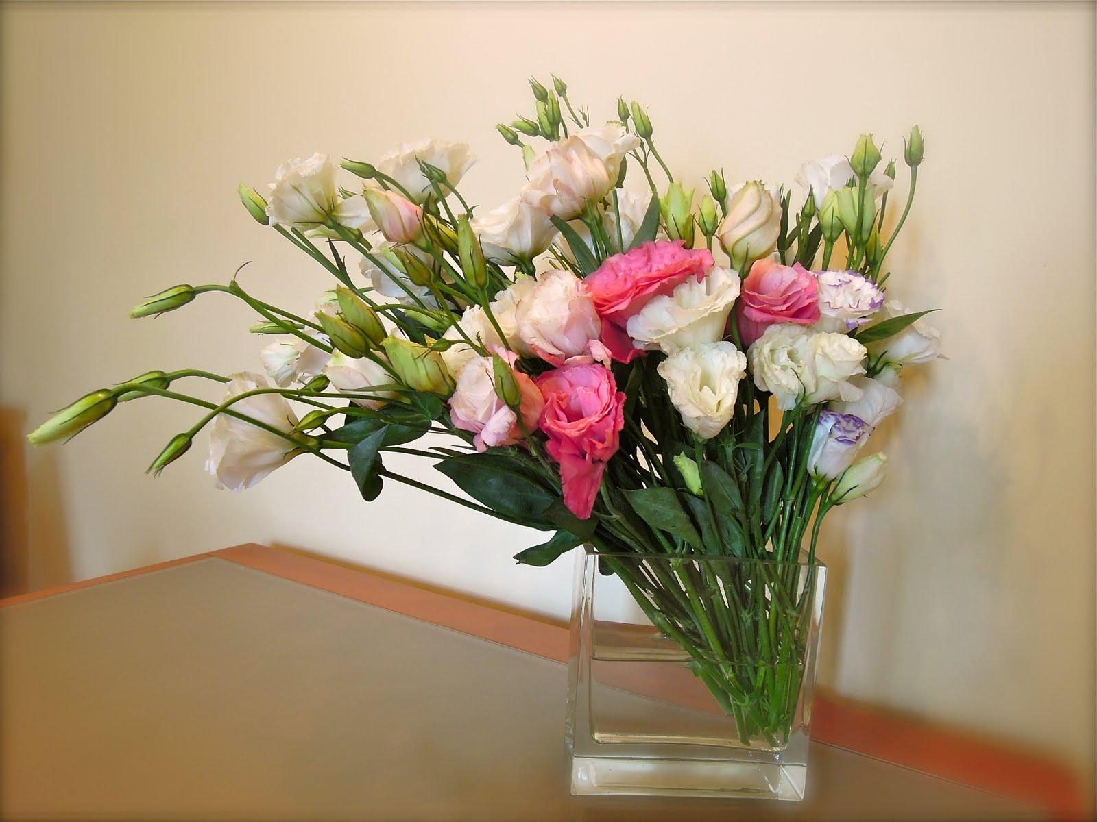 Planta sumergida Wikipedia, la enciclopedia libre - Imagenes De Flores Sumergidas En Agua