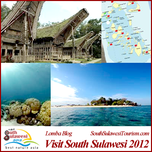 Visit South-Sulawesi 2012