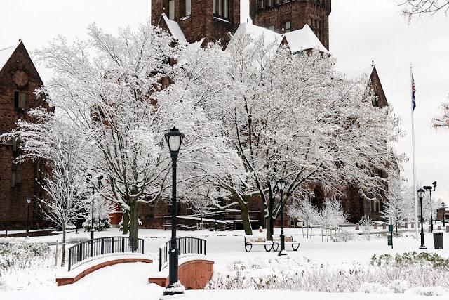 http://www.buffalorising.com/2013/11/cascio-captures-winter-wonderland/