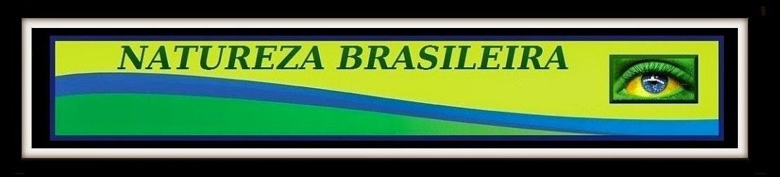 NATUREZA BRASILEIRA