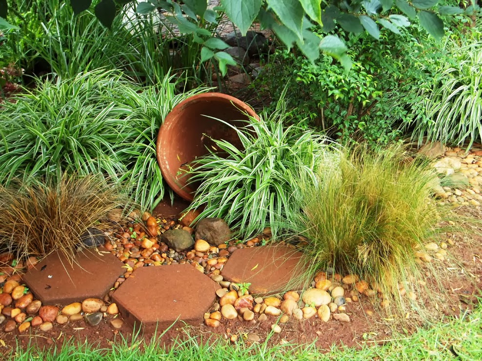 Gardening in africa ornamental grasses in the garden for Ornamental grasses garden ideas