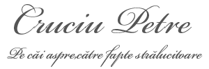 Petre Cruciu- Blog personal cu tenta juridica