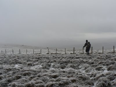 Earlier this year a fence proved to be an invaluable navigational guide when Matt and I did a high level walk above Gilderdale in very poor weather