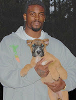 Michael Vick and Dogs