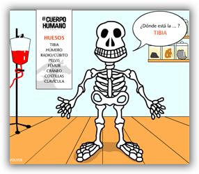 http://www.jugarconjuegos.com/juegos%20educativos/JUEGO%20MUSCULOS%20Y%20HUESOS.htm