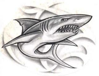 fotos de Tatuagens de Tubarões