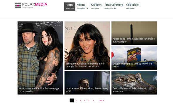 Polar Media - free media WordPress theme