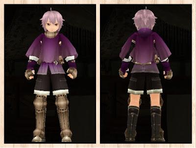 冒険者の服 紫色1 重量化(男)