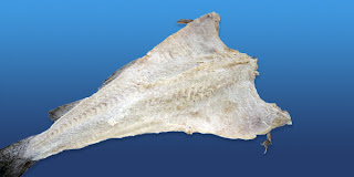 Codfish morue or kabeljau salted cod for Where to buy salted cod fish