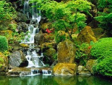 Arte y jardiner a cascadas construcci n de una cascada for Cascadas artificiales de agua para piscinas