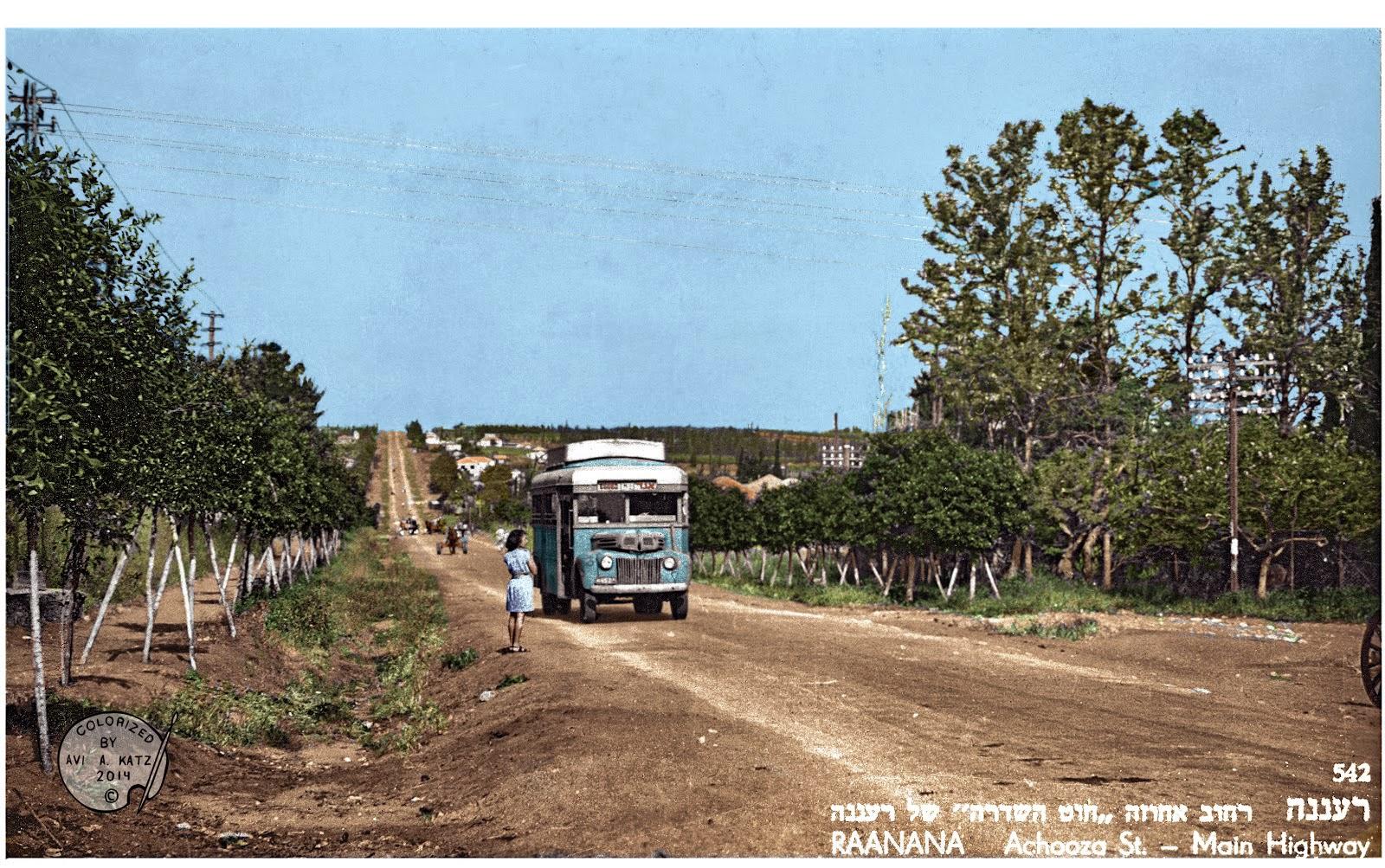 Raanana Israel  city photos : PAINTED BACK: Raanana Israel early 1950's