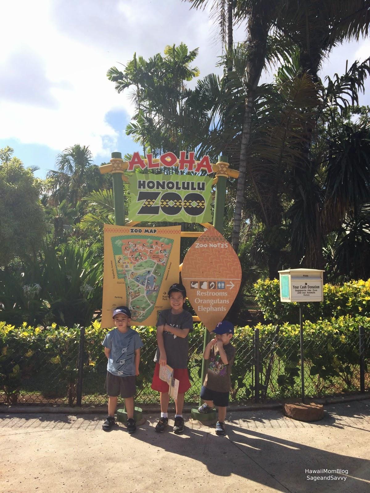 Hawaii Mom Blog Visit Oahu Honolulu Zoo