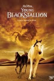 Ver Shetan el caballo del desierto Online Gratis (2003)