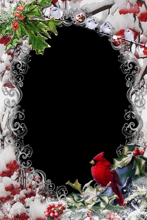 Marcos png para decorar tus fotos navide as t cnicas de - Decorar marcos de fotos ...