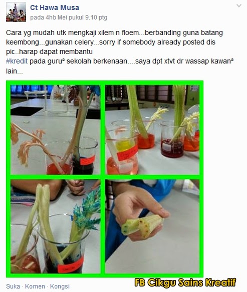Cikgu Sains Kreatif Cikgu Siti Hawa Musa