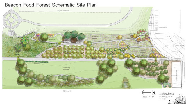 It's Not a Fairytale - Seattle to Build Nation's First Food Forest - Beacon Food Forest Schematic Site Plan