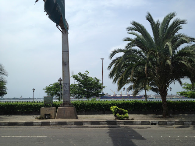 Palm Tree in Lagos, Nigeria, West Africa
