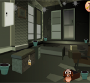 Pets room escape walkthrough solution cheats hints for Escape room tips and tricks